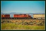 CP-6009 at Reverse, Idaho