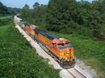 BNSF 4459 avoiding the kudzoo