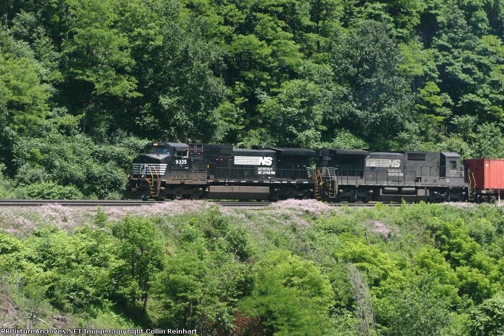 NS 9335 & NS 8307