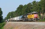 CITX 2788 leading P37