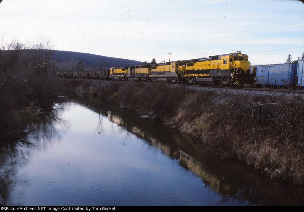 NYSW power leads a coal train