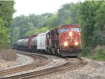CN 5730 leans into the curve with M391