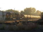 Grain hoppers reflect the sun as BNSF 4415 & 6696 head west with G343