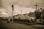 Amtrak 136 & 507 at Lincoln St Crossing in Eugene, Oregon