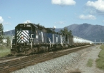 MRL SD35 Leads Loaded Gas Cans