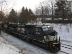 NS Auto Rack Train