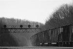 NS Coal Train under the PRR bridge