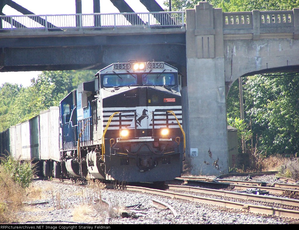NS 9856  leads a train of Triplecrown Trailers past MP88.  9/11/05