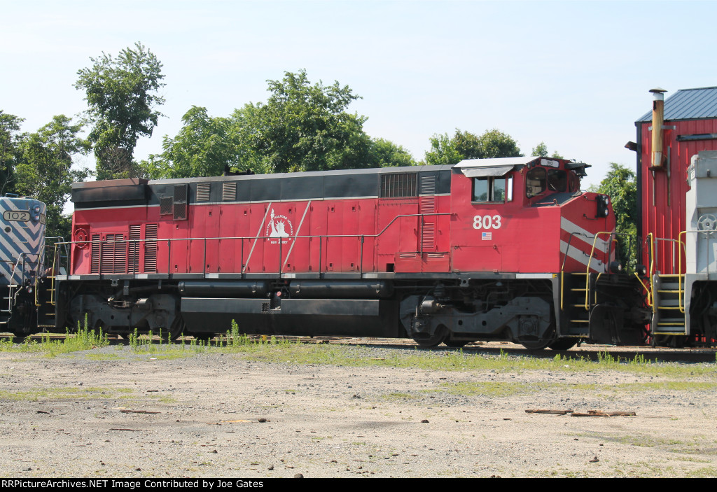 SRNJ 803