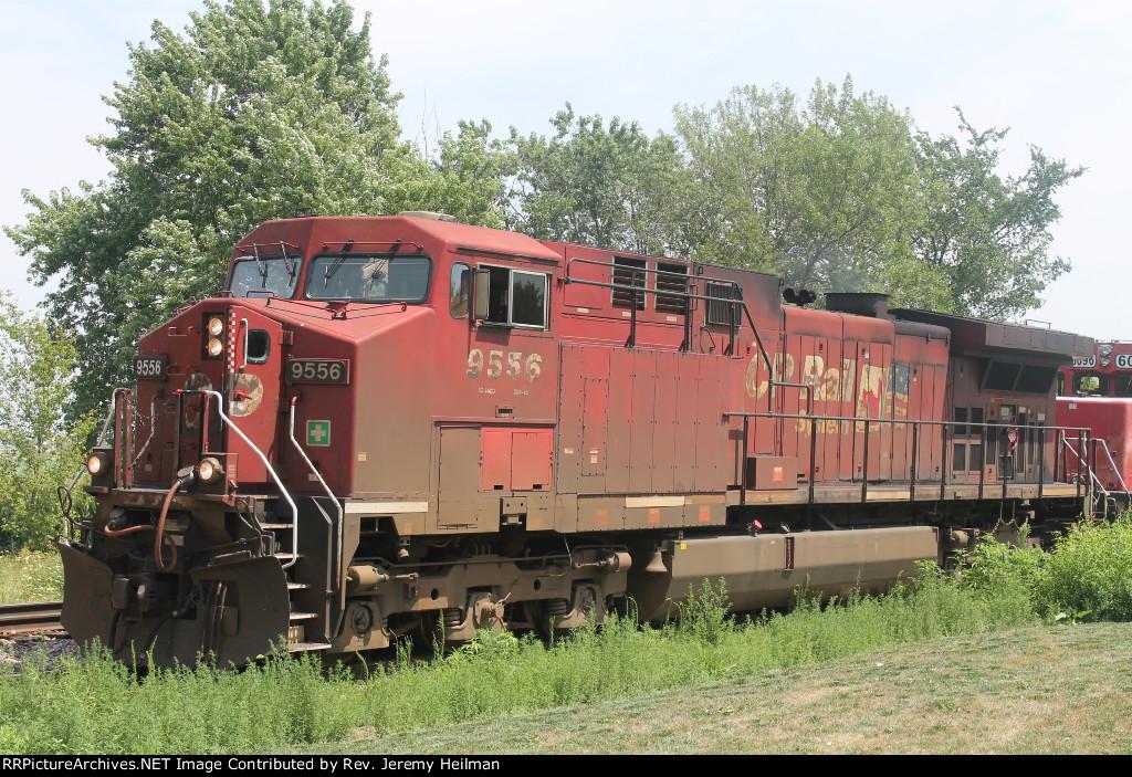 CP 9556 (1)