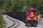 CP 8891 west in the siding at Mowitch BC