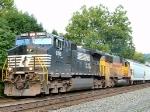 NS 9718
