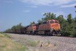 BNSF 5864 leading a Powder River train