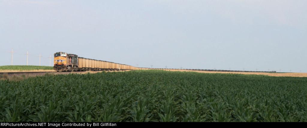 Coal and corn