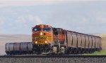 BNSF 4002 West