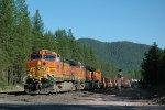 BNSF 4346 West
