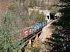 NS Train 116-04