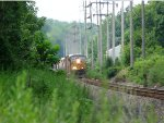 Q438 brings a long freight up the hill in Valley Cottage on the River Line