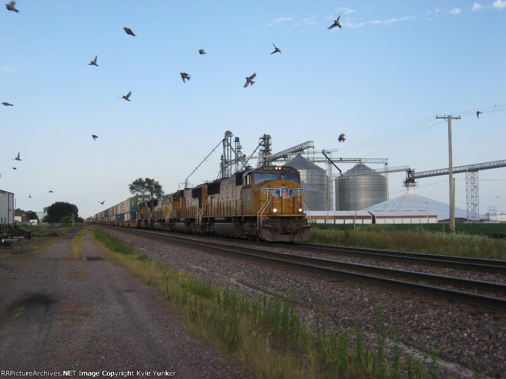 WB intermodal train scaring off some birds