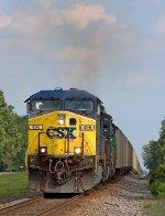 CSX 496