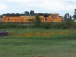 BNSF 8851