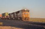 UP #4916 Leading An Intermodal