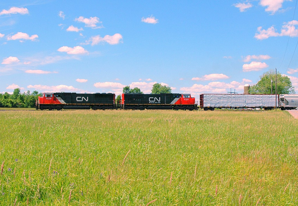 CN 5629 leading Q623 passes through a hay field just outside of Massena, NY