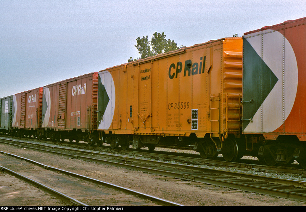 CP 269632, CP 140579, and CP 35599