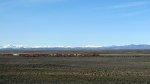 BNSF 6437 at Owinza, Idaho