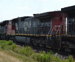 BCOL 4641