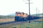 RDG 5301