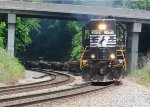 NS 3289 on NS G5A