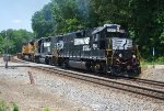 NS 5541 on NS G5A