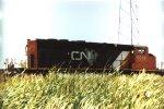 CN 5316