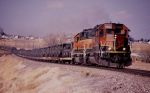 Fort Polk bound unit train on BNSF Front Range Subd