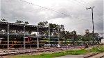 FTVM Locomotives at Ferrovalle