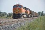 Coal train waits for clearance into Laurel Yard
