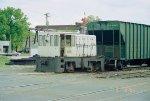 SCHREIER 7176