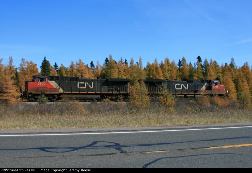 CN 2625 passing fall colors south of Little Lake, MI