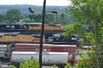 NORFOLK SOUTHERN POWER LOT