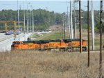 BNSF 7310  7329  AND 7445 (ES44DC)