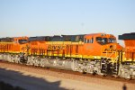 BNSF 6797 and 99 Gleam in the Early Morning Sunlight.