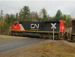 CN 2133 Crossing Brown Road