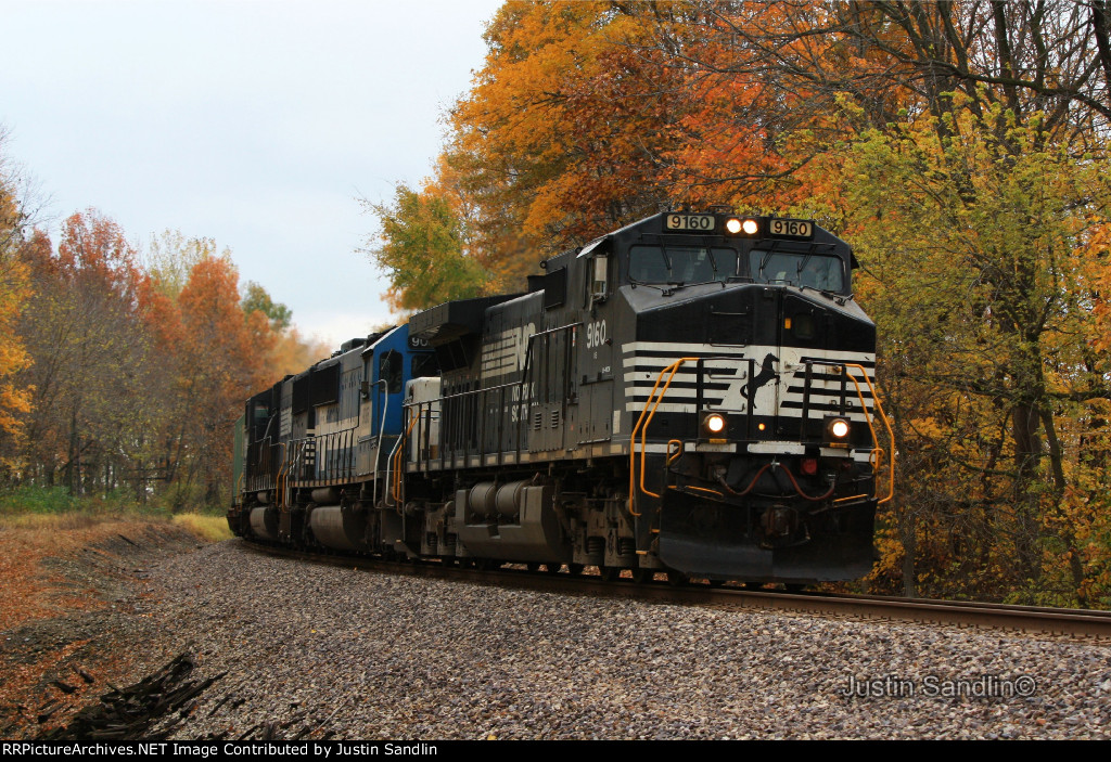 20T Under the Fall Trees