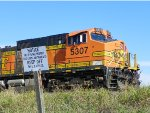 AYSF NO TRESPASSING SIGN AND BNSF C44-9W 5307