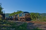 After a parade of southbounds, CSX Q161 roars through the cut