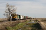 BNSF Niobe Subdivision Local on its Way to Northgate