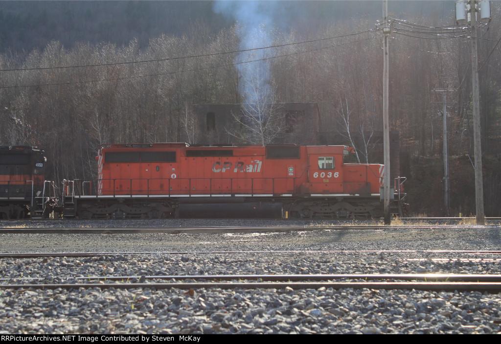 CP 6036