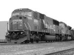 NS 6783 in B/W 10/13/2005