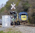 CSX freight waiting in the siding